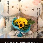 art-season-himawari
