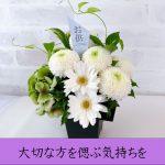 flower-oso1